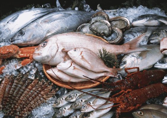 Những cách bảo quản hải sản