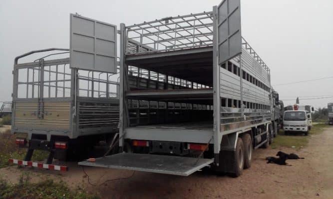 Khoang chứa gia súc phải chắc chắn và thoáng khí