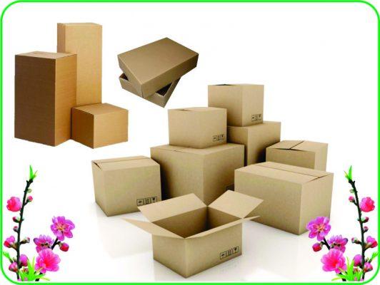 Thùng carton mang lại nhiều tiện ích trong công việc đóng gói