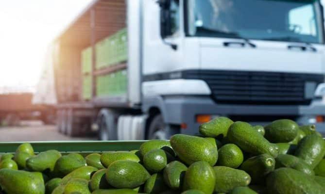 Đơn vị vận chuyển trái cây uy tín