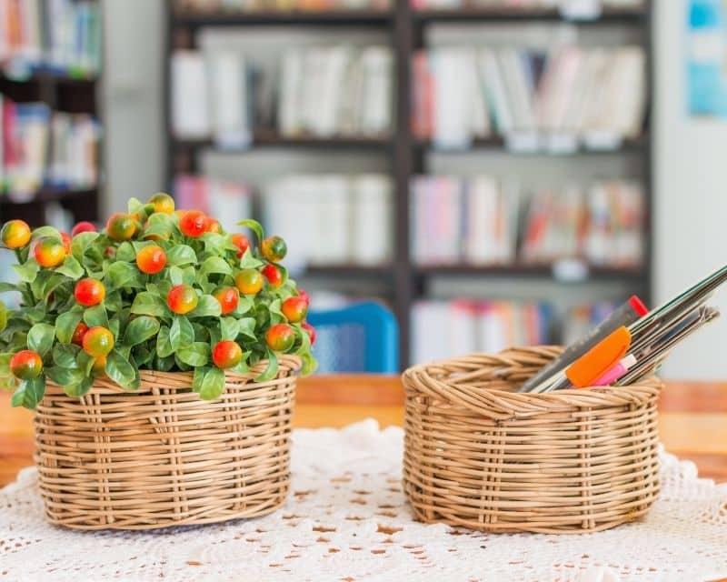 Loài hoa để bàn làm việc trong phong thủy theo mệnh